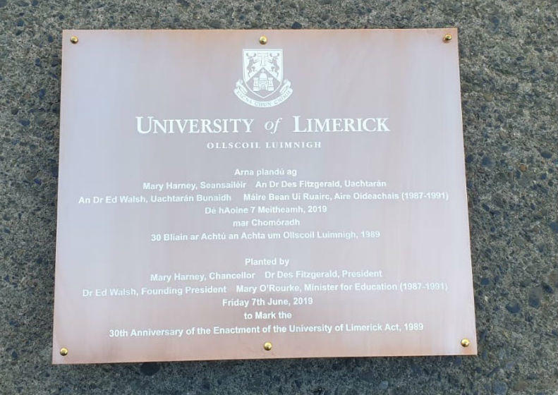 Copper Plaque for the University Of Limerick